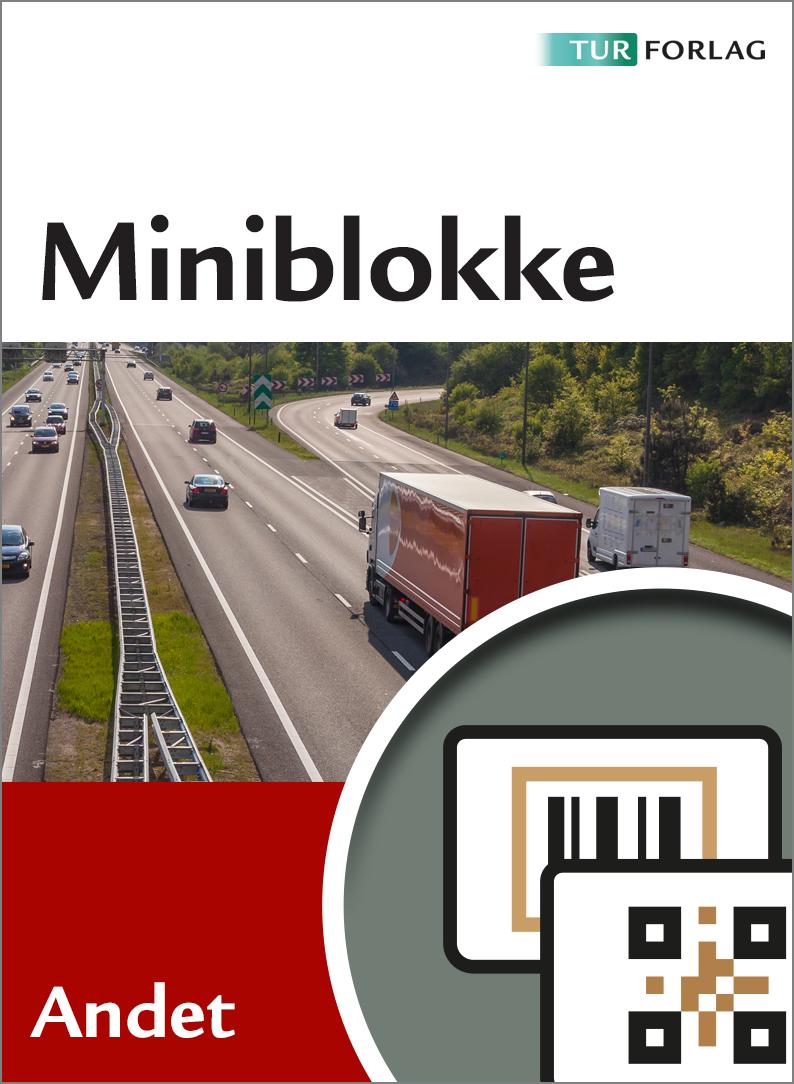 Miniblokke